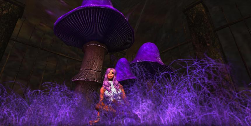 Violaceous Forest   (Lauren Bantham - 4096sm), Burning Man-Opal (210, 196, 24)_011