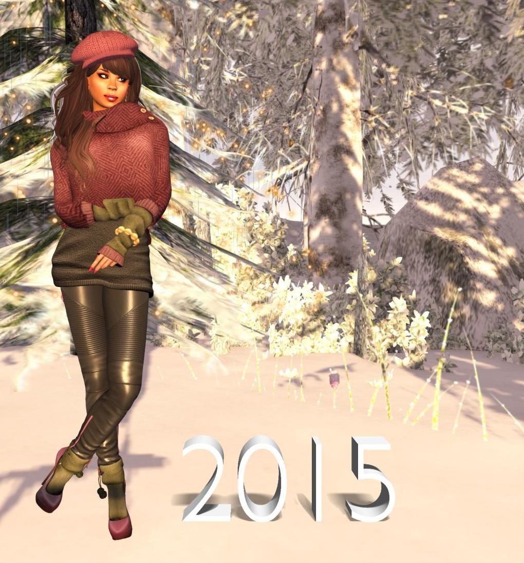 Moco Explore 2015